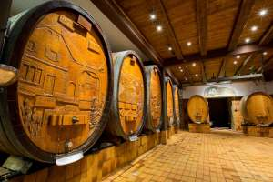 Wine Cellar of Materne Haegelin and Daughters